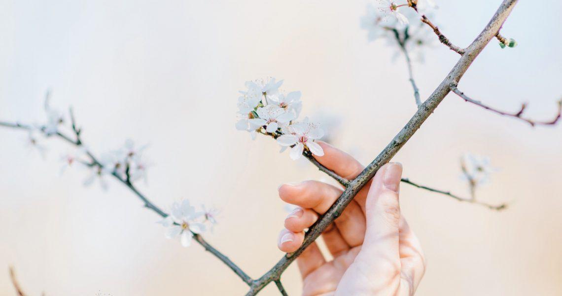 7 consejos para combatir los síntomas de la alergia