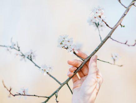 combatir los síntomas de la alergia